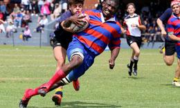 Spécialité Perfectionnement sportif : Mention Rugby à XIII