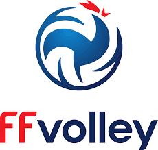 Fédération française de volley — Wikipédia